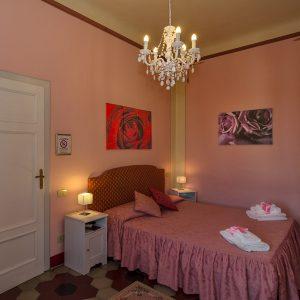 camera-rosa