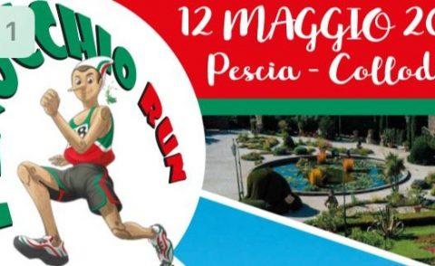pinocchio run 12 Maggio 2019